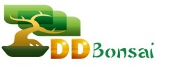 DDBONSAI